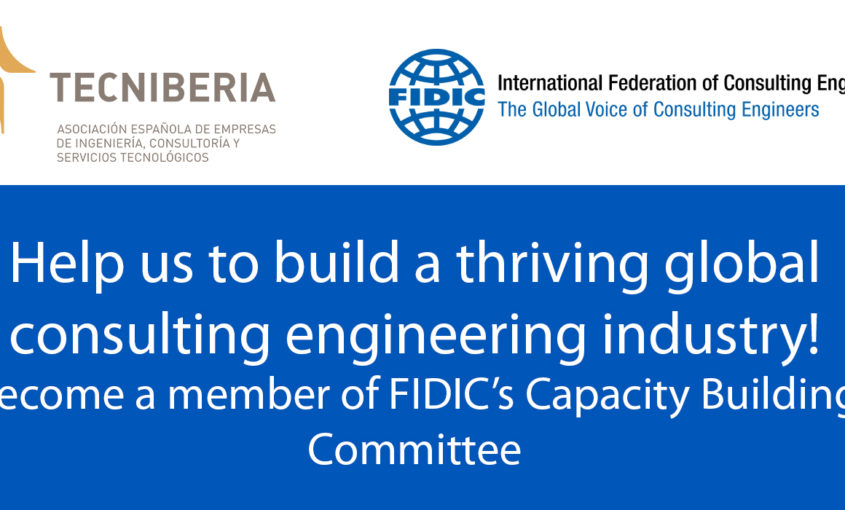 """Capacity Building Committee"" de FIDIC"