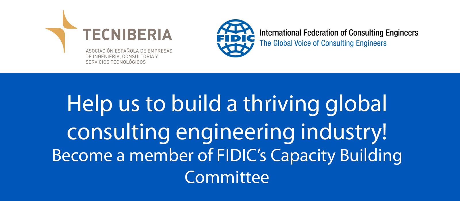 """""""Capacity Building Committee"""" de FIDIC"""