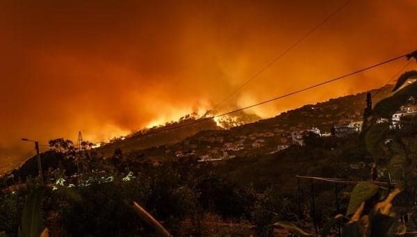 FIDIC Cambio climático