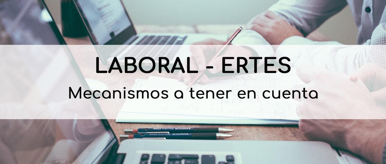 Webinar Laboral-ERTES